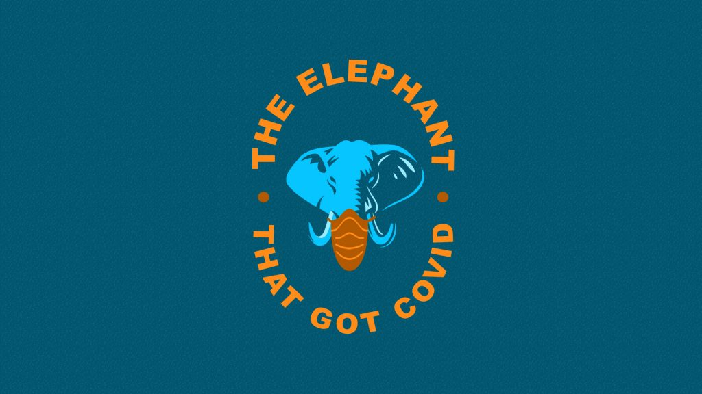 The Elephant That Got Covid Artwork